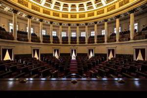 Demokratie im Plenarsaal
