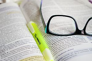 Bildung: Buch lesen