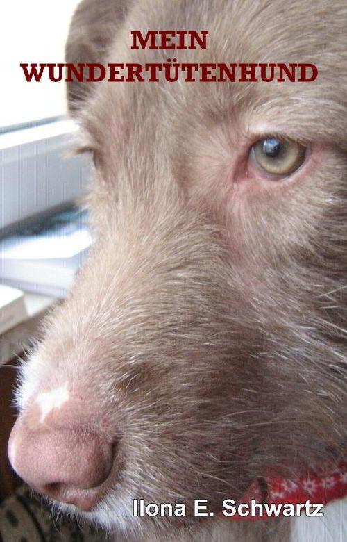 Tierbuch: Mein Wundertütenhund