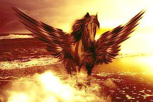 Krafttier Pegasus