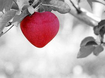 Liebe Herz Apfel
