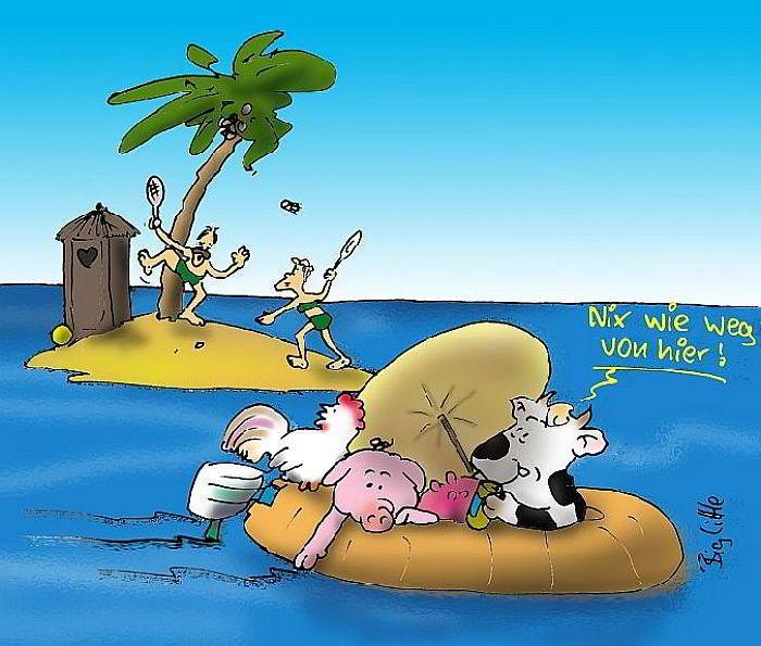 Wir brauchen einen Inseltag