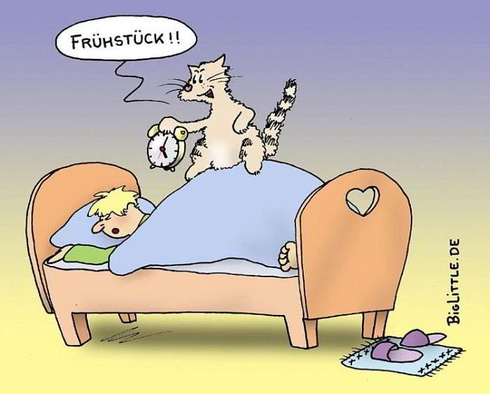 Katzenbesitzer Cartoon