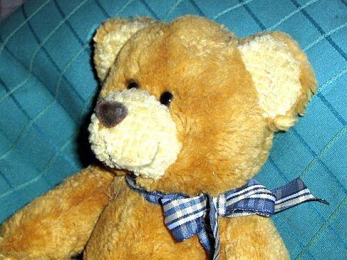 Teddy Kindergeschichte