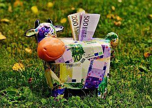 Sparschwein mit Geldschein