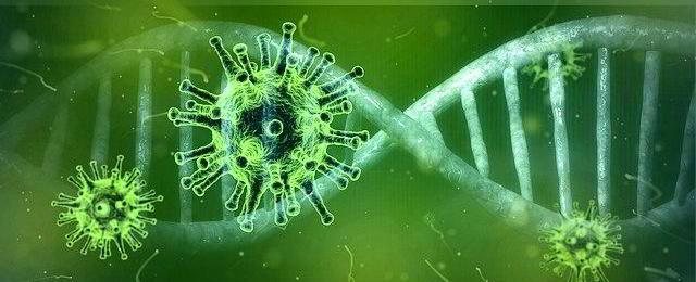 Corona-Virus Pandemie