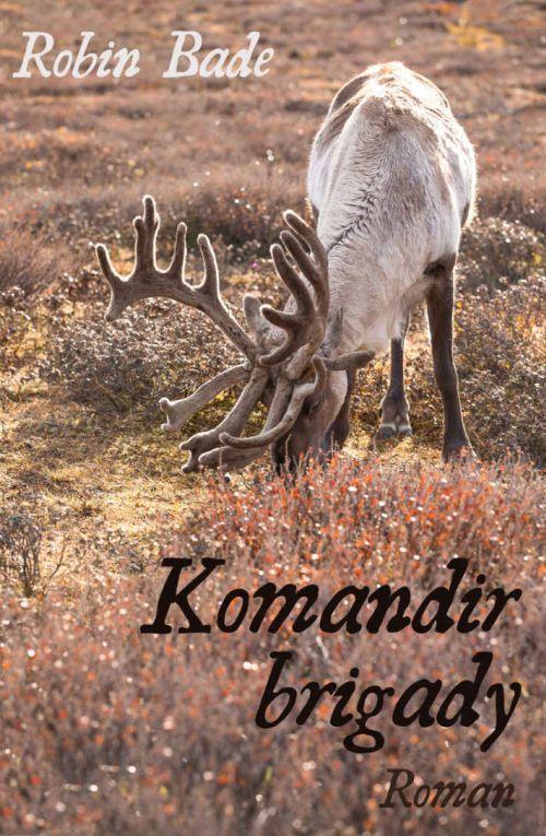 Dramatische Erzählung: Komandir brigady