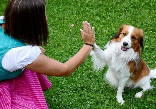 Geste: Frau mit einem Hund