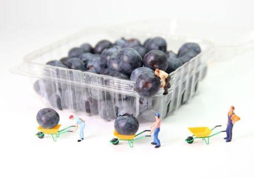Heidelbeeren in Plastikverpackung