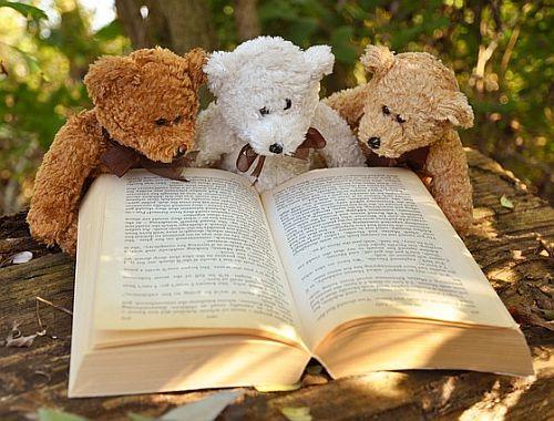 Literatur und Sachbuch: Buchen Sie uns für Lesungen!