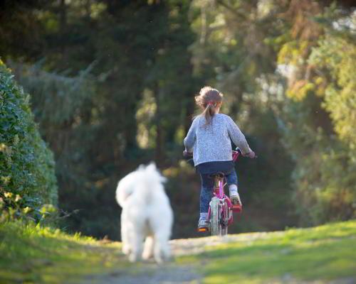 Sommer: Mädchen auf Fahrrad