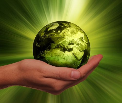 Mensch, Natur und Umwelt