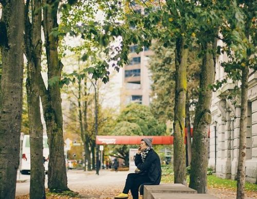 Gehweg mit Bäumen