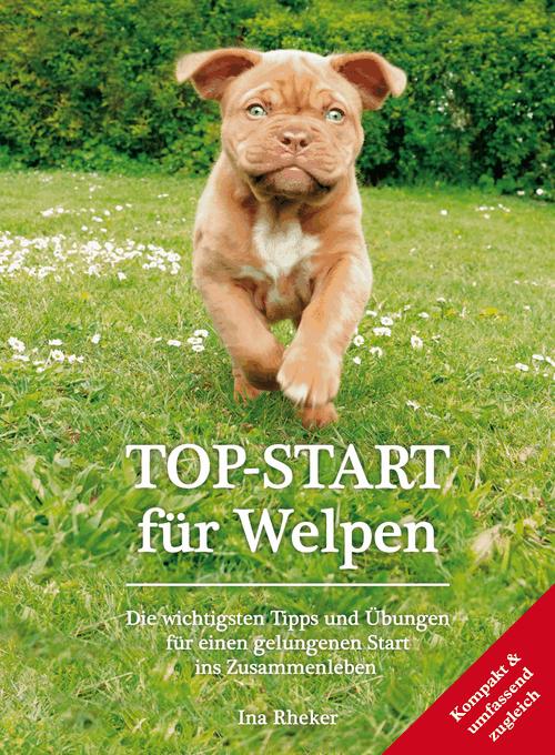 Sachbuch zum Thema Hundeerziehung